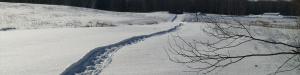 winterWalkway-300x75