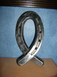 Horseshoe Ribbon