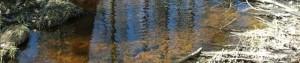 cropped-creek-300x63
